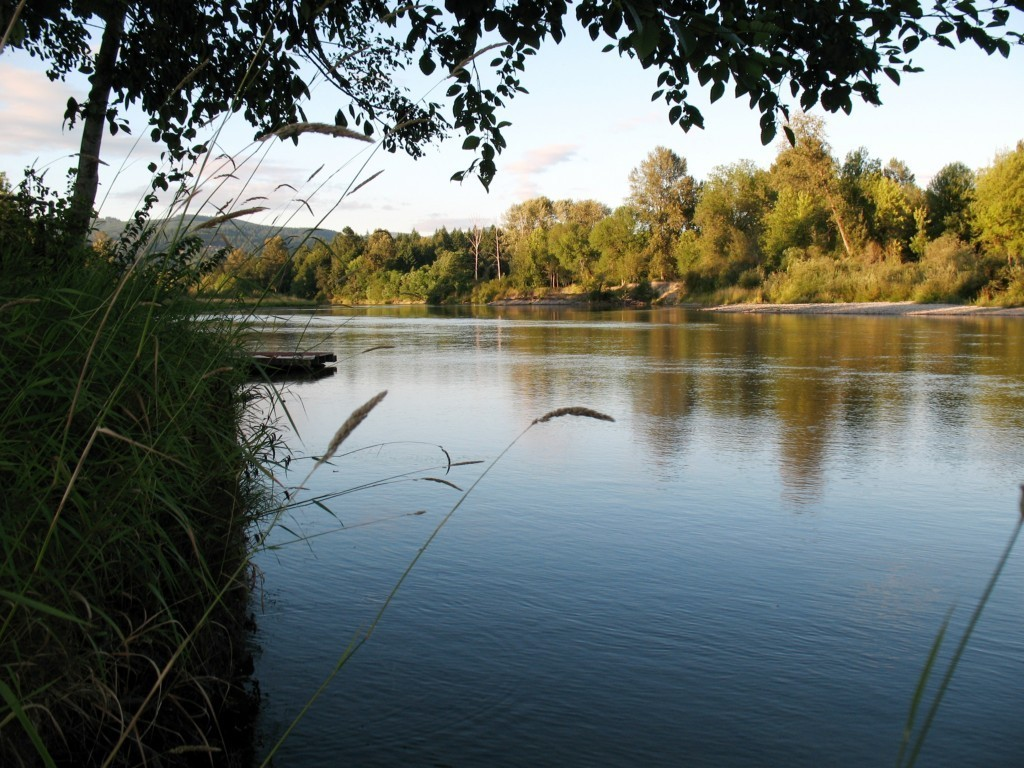 2200 lewis river rd woodland wa 98674 mls 175224 redfin for Lewis river fishing report